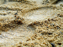 Foot in sand Royalty Free Stock Photo