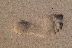 Foot in the sand. Human foot on a sandy beach Royalty Free Stock Photos