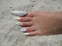 Foot on sand with shell nails.  Royalty Free Stock Photo