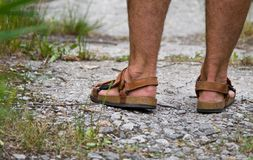 Foot in sandals. Male feet in brown sandals Royalty Free Stock Photography