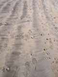 Foot Shoe Print Sand. Variety of Foot, Shoe Prints among pebble like washed up corals on Sand at beach royalty free stock photo