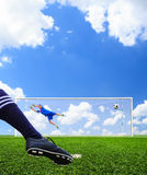Foot shooting soccer ball to goal Royalty Free Stock Photography