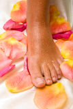 Foot on the silk cloth with rose-petals Royalty Free Stock Photo