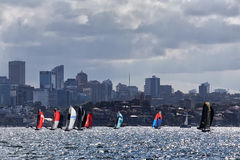 18 foot skiffs on Sydney Harbour Royalty Free Stock Image