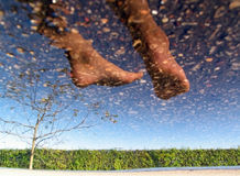 Foot in the sky. Foot's reflection in the water Royalty Free Stock Photo