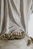 The foot and the snake Royalty Free Stock Image