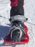 Foot in snowshoe. Stock Images