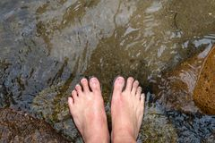 Foot soak in water. Bare foot soak in clear water on creek Stock Images