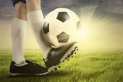 Foot of soccer player and ball on the grass Royalty Free Stock Image