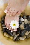 Foot spa Royalty Free Stock Photo