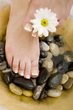 Foot spa Stock Image