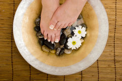 Foot spa royalty free stock image