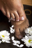 Foot Spa Stock Photo