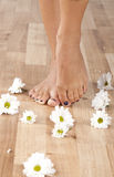 Foot Spa Stock Photo