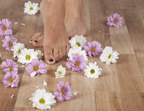Foot Spa Royalty Free Stock Photos