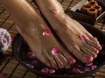 Foot Spa Treatment Stock Images