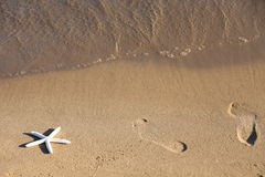 Foot and starfish prints on a sandy beach Royalty Free Stock Images