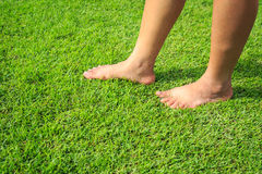 Foot step on green grass Royalty Free Stock Photography