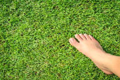 Foot step on green grass Royalty Free Stock Photo