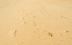 Foot step on sand Stock Images