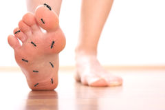 Foot stepping ant chicle diabetes leg Stock Images