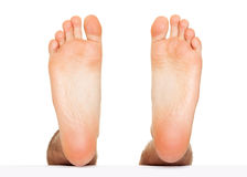 Foot stepping isolated. On white Royalty Free Stock Photo