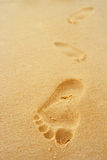 Foot steps Stock Image