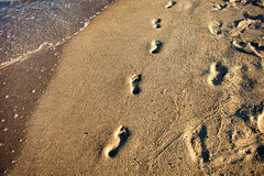 Foot steps on beach sand Stock Images