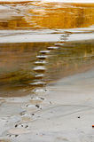Foot steps in polluted lake Royalty Free Stock Photography