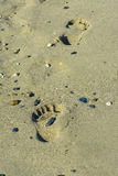 Foot steps in the sand Stock Photography