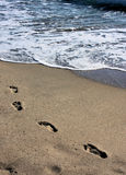 Foot steps in the sand. Leading into the ocean Royalty Free Stock Photography