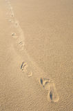Foot steps in smooth, beige sand Royalty Free Stock Photo