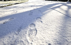 Foot Steps in the Snow. Boot Prints in fresh snow Royalty Free Stock Image