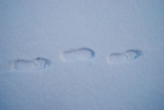 Foot steps on snow ground snowy day of winter royalty free stock image