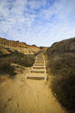 Foot steps at Torrey Pine Stat Park Stock Photography