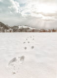 Foot steps trails at snowy winter Royalty Free Stock Photo