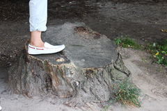 The foot on a stump. An old stump and leg on it with white moccasins Royalty Free Stock Photo