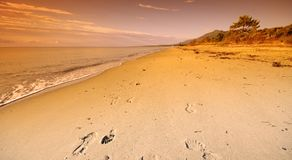 Foot track in Mediterranean beach Royalty Free Stock Images