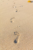Foot tracks on sand, Boracay Island, Philippines Royalty Free Stock Photography