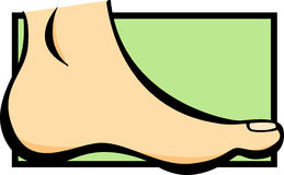 Foot vector illustration vector illustration