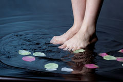 Foot in water. Woman foot in water with petal Royalty Free Stock Photography