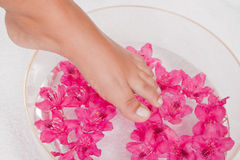 Foot in the water Royalty Free Stock Photo