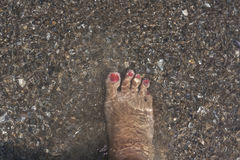 Foot In A Water Stock Photo