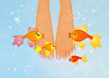 Foot in the water with red fishes. Illustration of foot in the water with red fishes Royalty Free Stock Photos