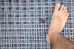 Foot on wire net Royalty Free Stock Photo