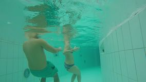 Underwater Swimming In An Artificial Stream stock video footage