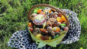 Footage of basket with Easter cake, dried fruits and nuts on the green grass in garden stock video footage