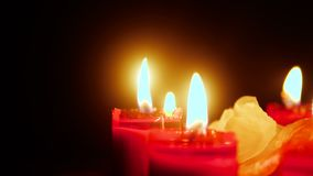Footage of candle burning with flower petals. Valentine day stock footage