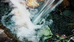 Clean drinking water falls into the water in the summer. This is footage of Clean drinking water falls into the water in the summer stock video footage