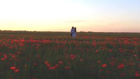 Marriage proposal at field of flowers at happy womens day. Footage by drone of Marriage proposal at field of flowers at happy womens day or St Valentines Day stock footage